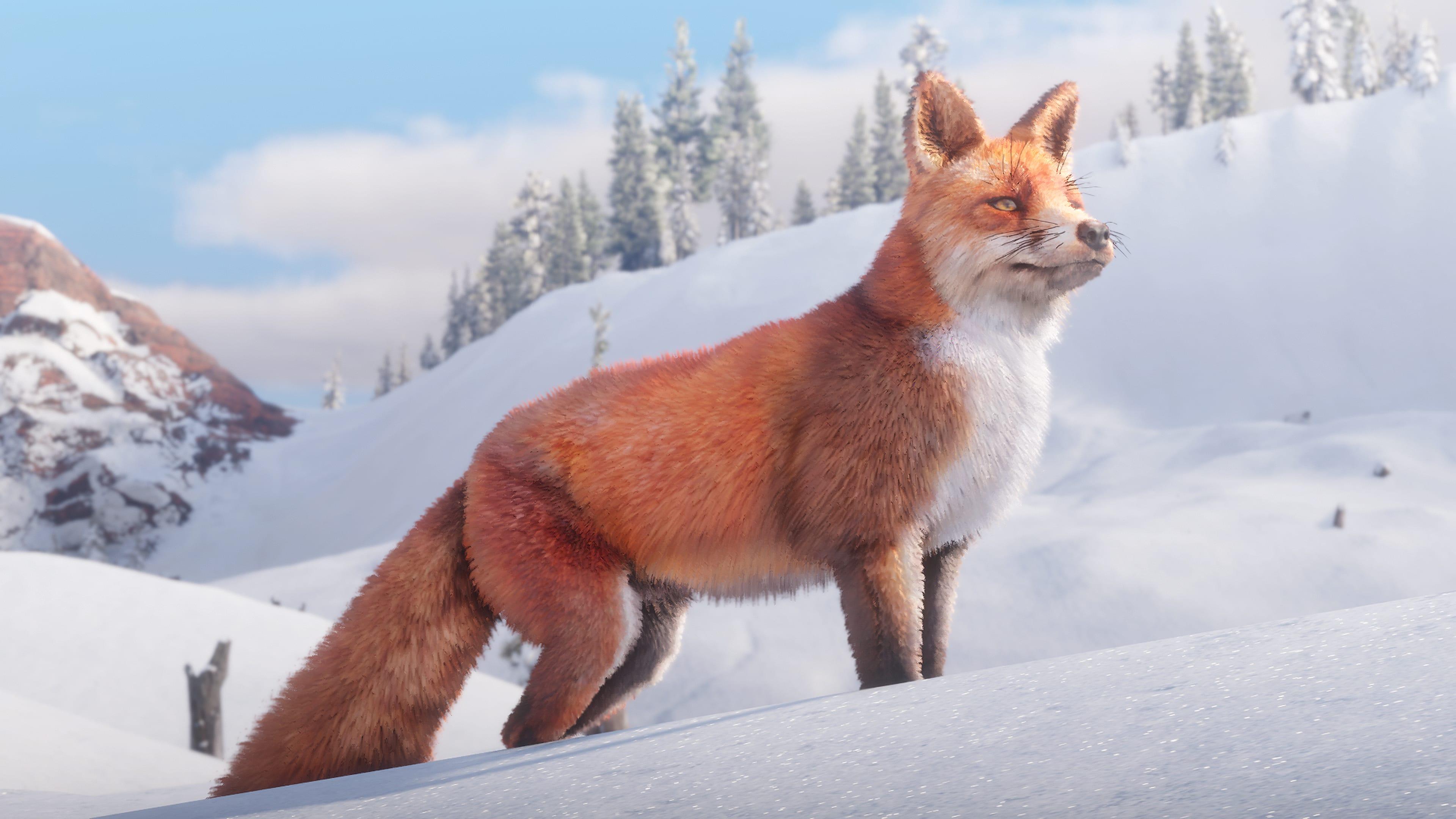 read fox 2