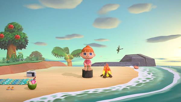Animal Crossing: New Horizons    Nintendo