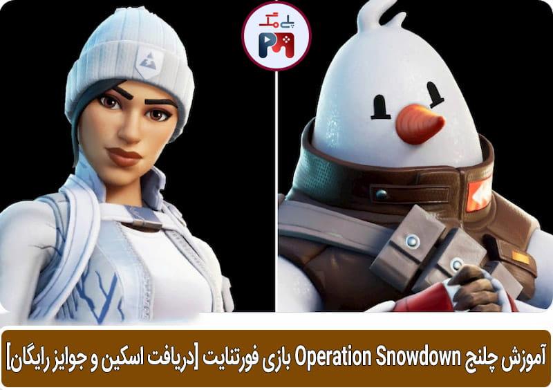 تصویری از اسکین های Frost Squad و Snowmando که بعد از تکمیل چلنج ها به شما به طور رایگان هدیه داده می شود